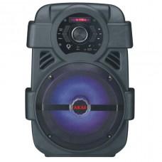 Портативная акустика AKAI ABTS-808L